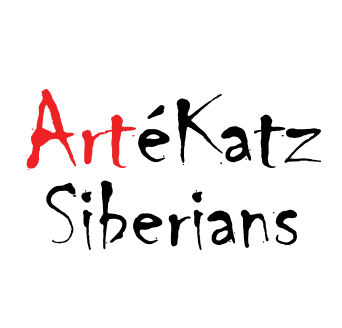 artekatz|ArteKatz writing